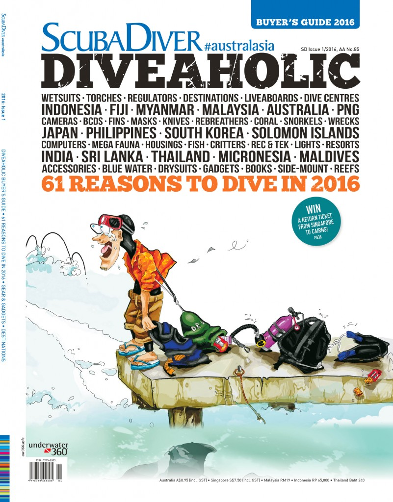 SDAA DIVEAHOLIC cover