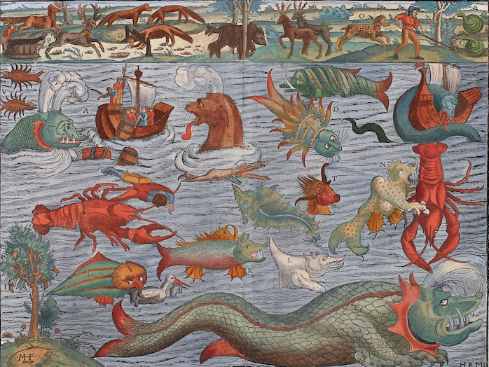 Historically, decorative drawings of heraldic dolphins from the Pacific Islands were frequently used to illustrate maps, such as the Carta marina, or Map of the Sea, created between 1527 and 1539. They highlight sightings of sea monsters often catalogued and studied by folklorists.