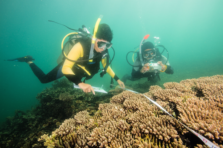 Scientist Emelinda Abian and her assistant study the health of a coral reef near Concepcion one year after Typhoon Haiyan destroyed many reefs in this area.