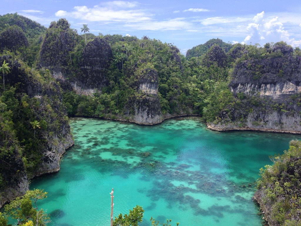 The clear waters of Raja Ampat © Max Mossler