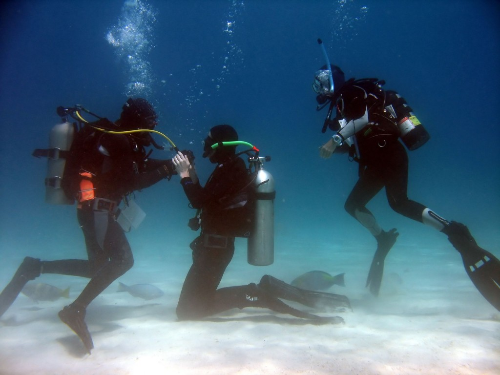 A scuba student practicing taking air from the instructor while another student watches. © Elisei Shafer