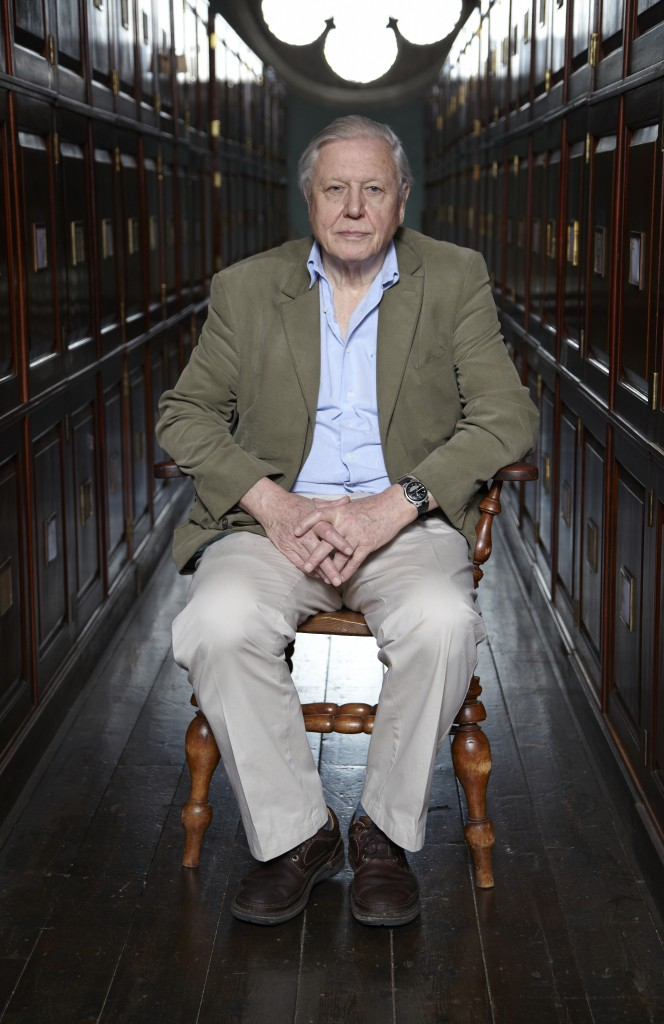 Sir David Attenborough at the age of 87. Source: SD OCEAN PLANET