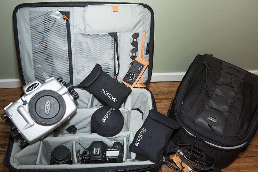 Just a small sample of the amount of kit Michele has to take on an underwater assignment © Michele Westmorland