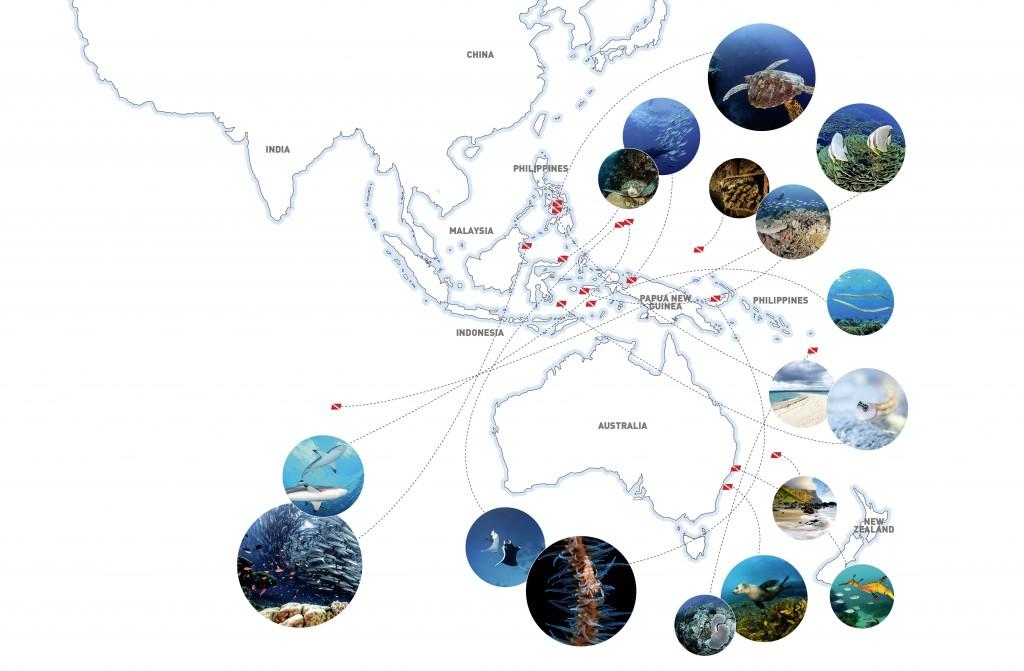 Infographic-Tiny Islands