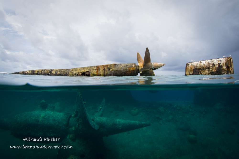 """After WWII excess military equipment wasn't needed anymore and would have been expensive to transport back to the United States, so over 150 planes in perfect condition were dumped into the lagoon of Kwajalein Atoll."" © Brandi Mueller"