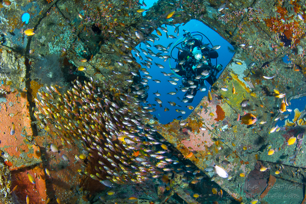 Exploring Bruce Wreck of Verde Island. © Mike Bartick
