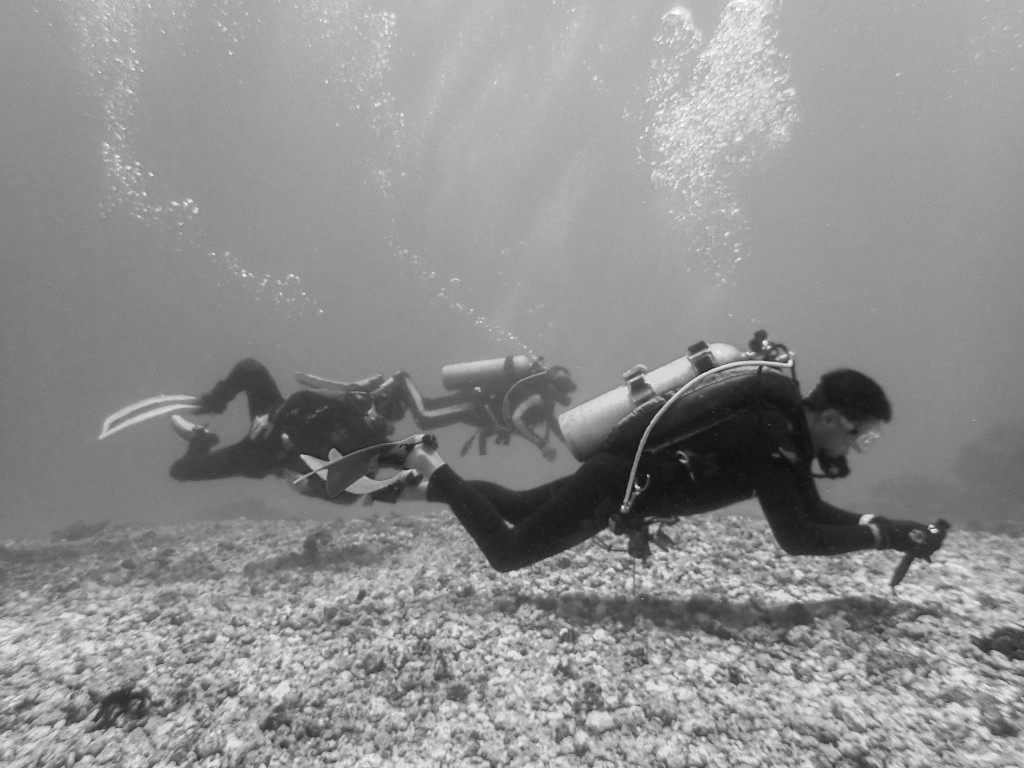 By just looking at the bubbles you can see the strength of the current. In the foreground a diver gets comfortable with a reef hook. © UW360